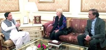 Austrian Ambassador calls on acting Governor Ch Parvez Elahi, pledge to promote bilateral relations