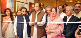 Differences do occur in democracy, this is nothing new, we are with the chief minister: Ch Parvez Elahi
