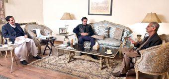 Negative propaganda regarding national security institutions regrettable: Ch Parvez Elahi